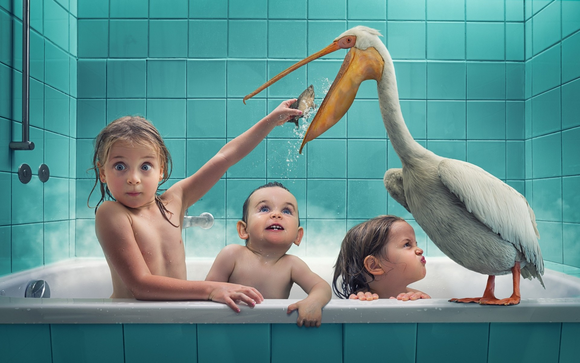 pelican boys children birds bath swimming situation fish girl