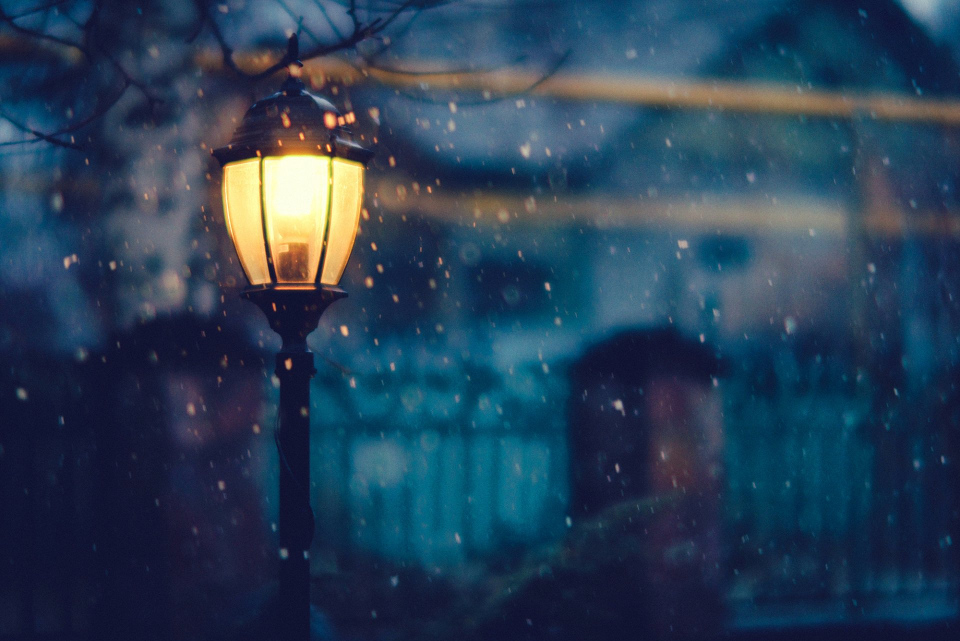 light lighting night snow winter tree house fence