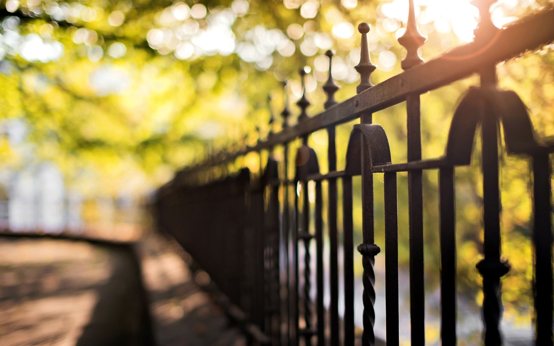 close up fence fencing blur bokeh background tree wallpaper widescreen full screen hd wallpapers macro