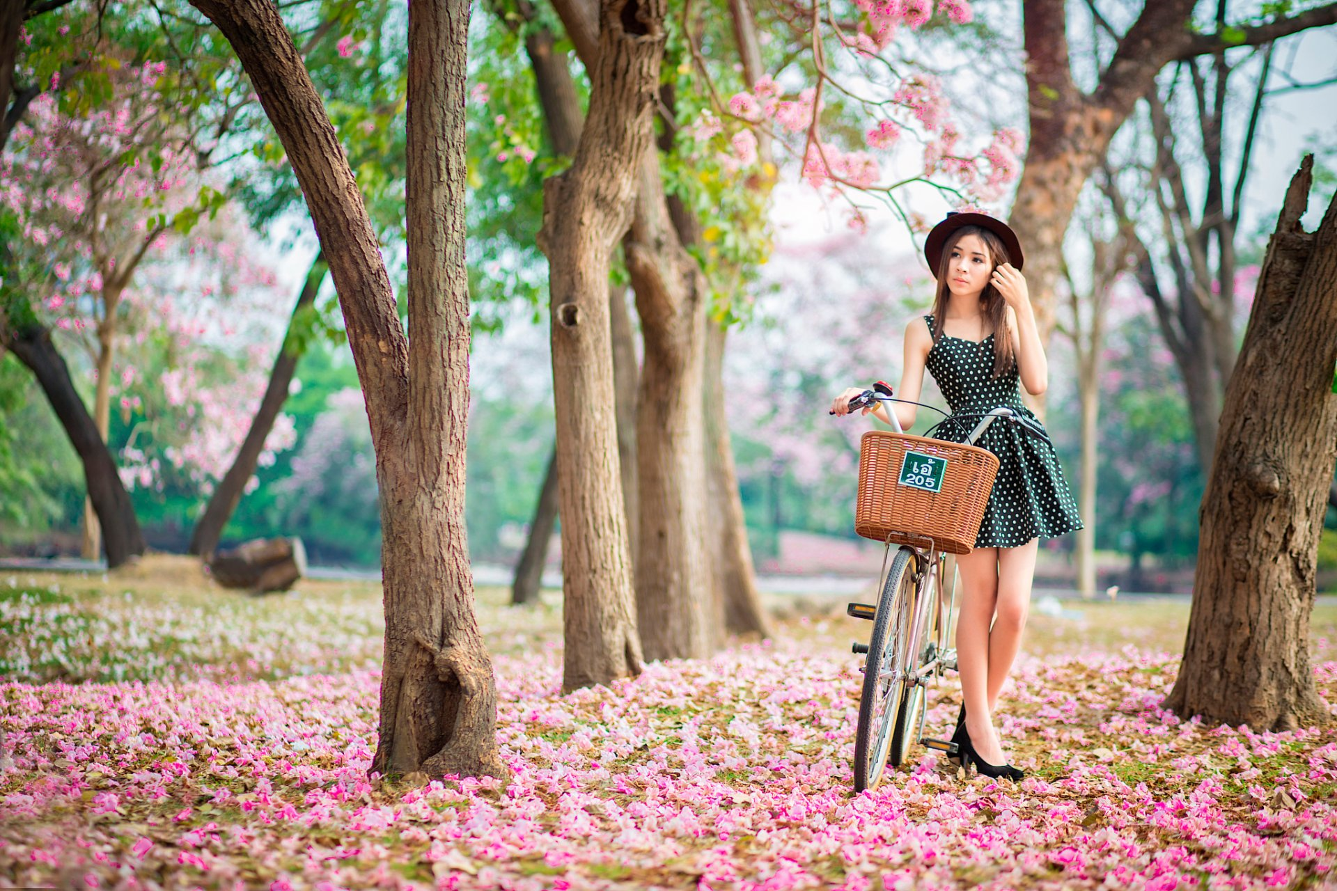 pink garden girl bike spring bloom
