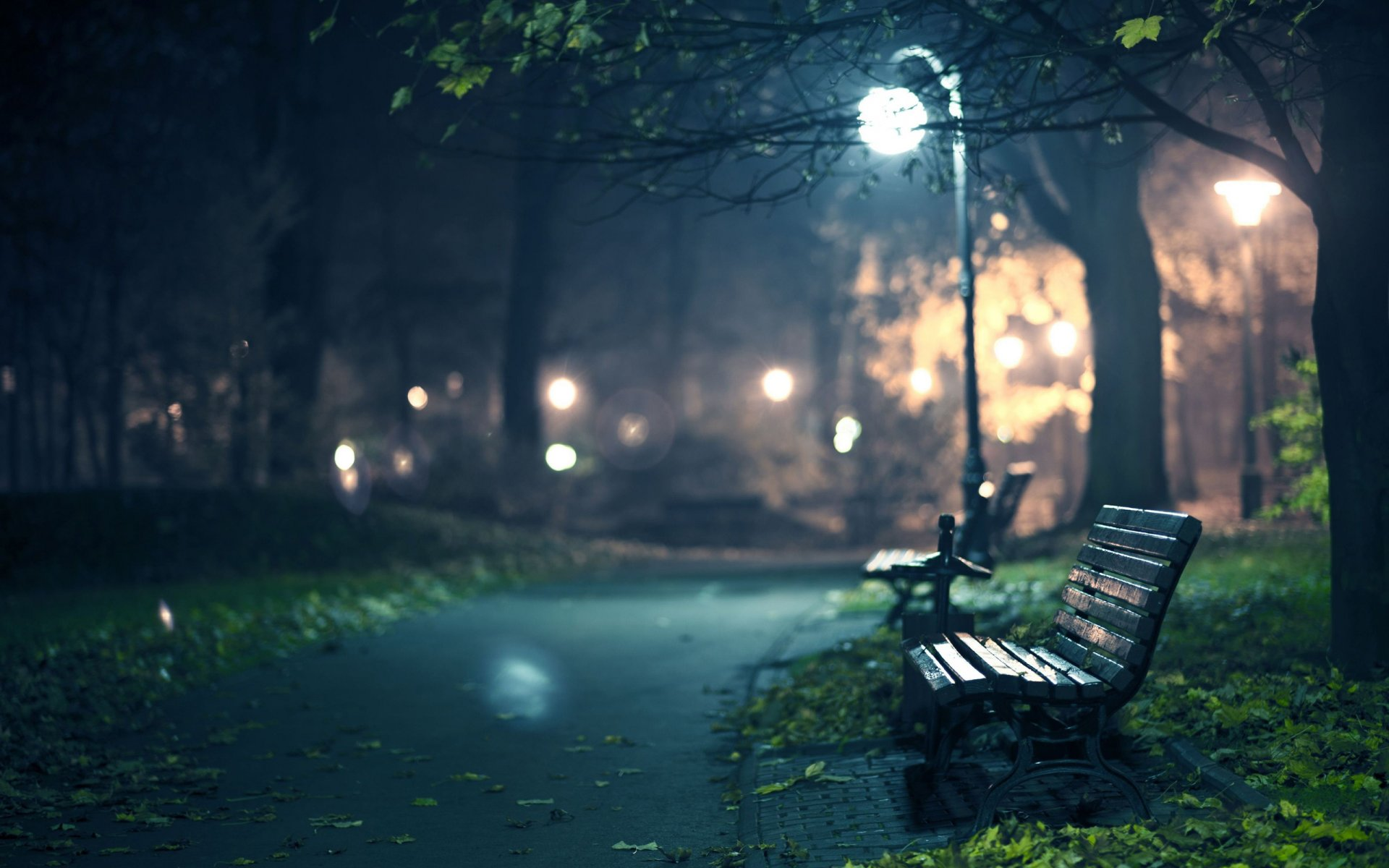 romance night shops benches shop bench seats parks night city track walks walk tree light lights twilight darkness lamps leaves foliage autumn autumn wallpaper autumn wallpapers fallin